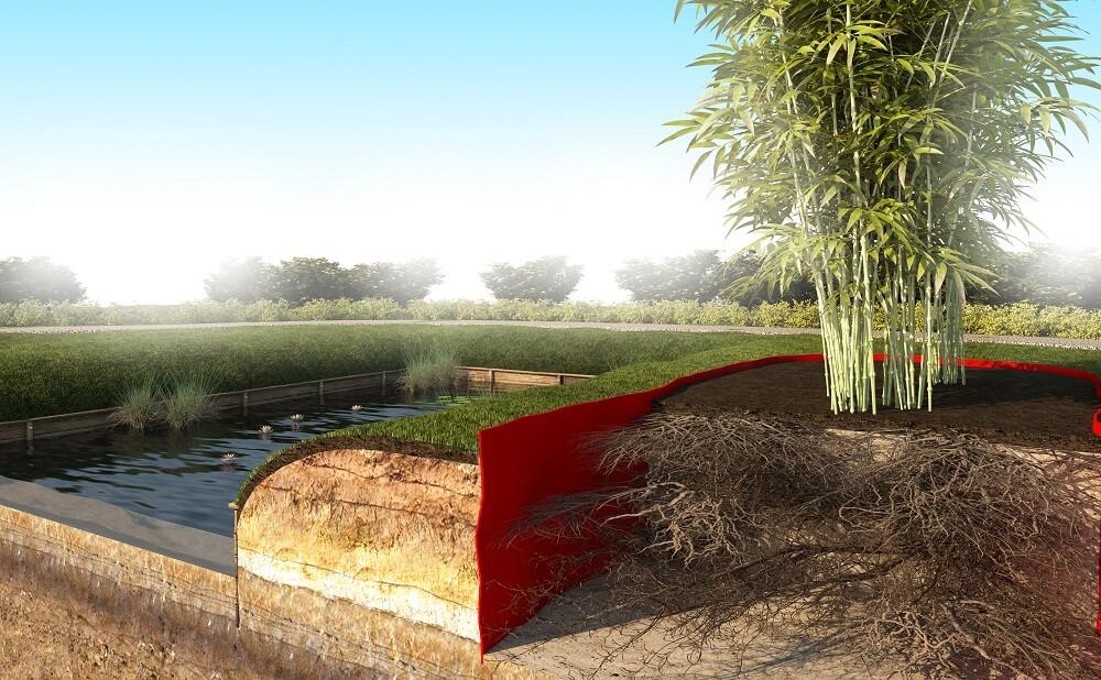 last van bamboe wortels in uw tuin de wortelbegrenzer. Black Bedroom Furniture Sets. Home Design Ideas